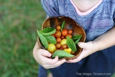 Rhythm in the Waldorf Home on Discovering Waldorf Education with The Magic Onions Blog
