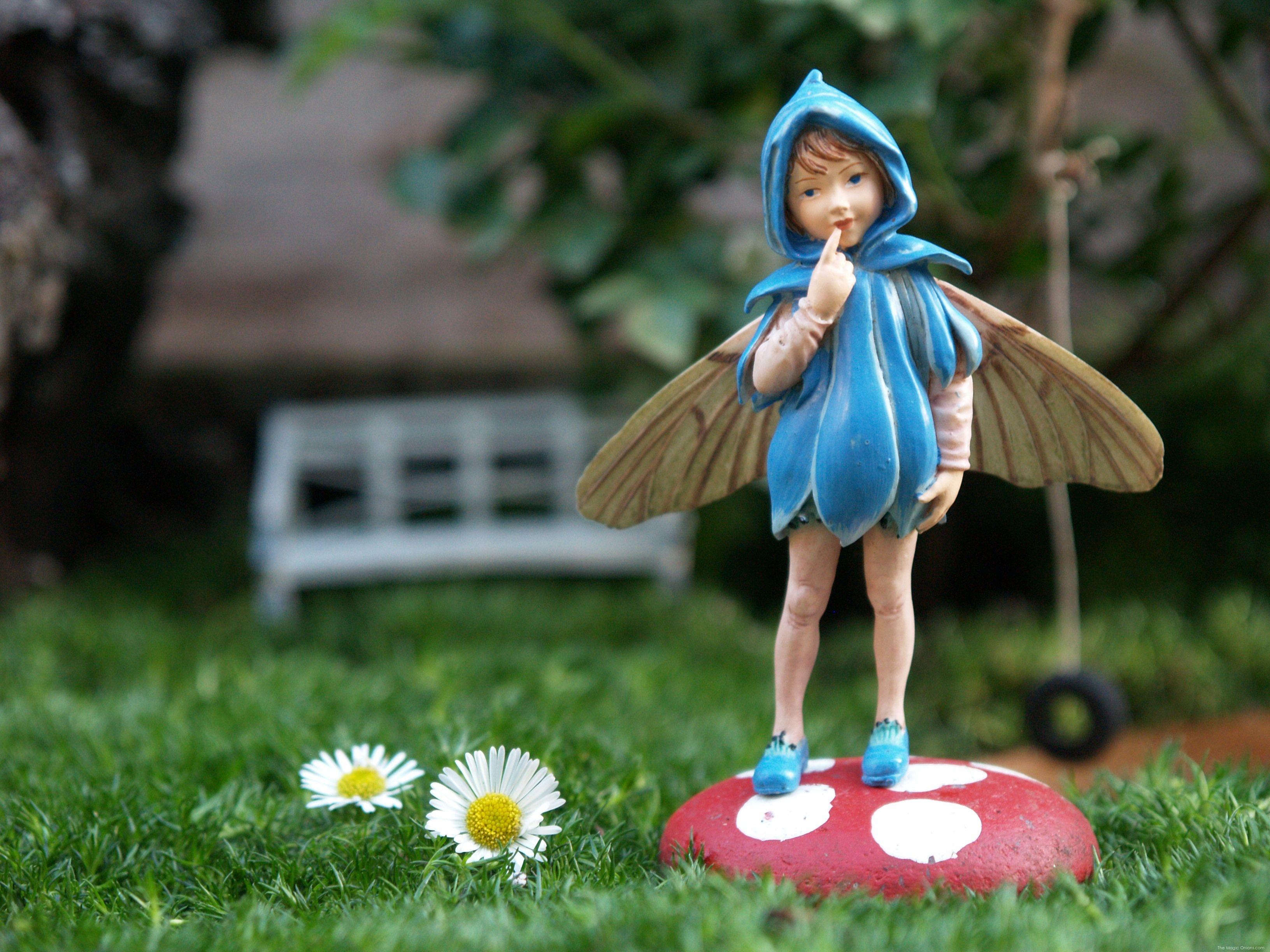 Tutorial : Fairy Garden : The Magic Onions : www.theMagicOnions.com