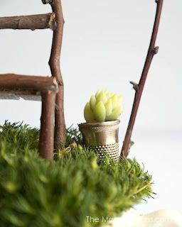 Miniature Pot Plant for your Fairy Garden : The Magic Onions : www.theMagicOnions.com