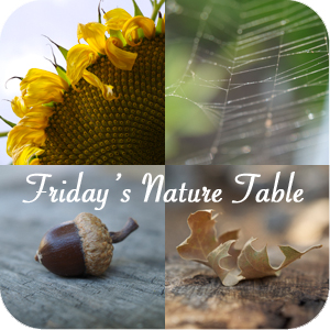 Friday Nature Table