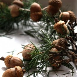 Let's make an Acorn Garland for the Christmas Tree.
