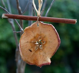 Handmade Christmas Ornaments :: Dried Apples and Cinnamon