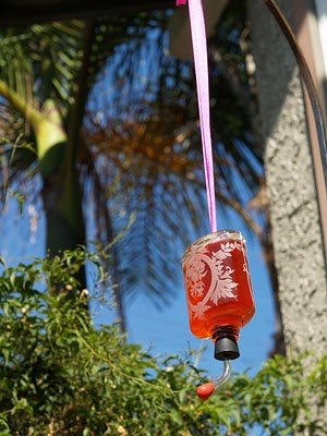 Make a Hummingbird Feeder.