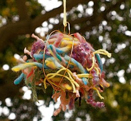 Helping The Birds Make Beautiful Nests