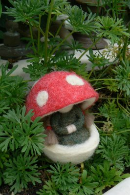 A New Gnome in the Garden.