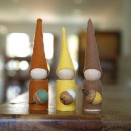 Make Autumn Gnomes