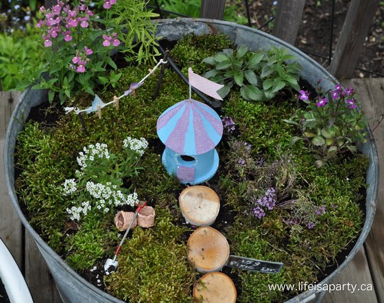 Fairy Gardens on The Magic Onions :: www.theMagicOnions.com