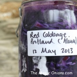 Natural Dyeing Using the Sun