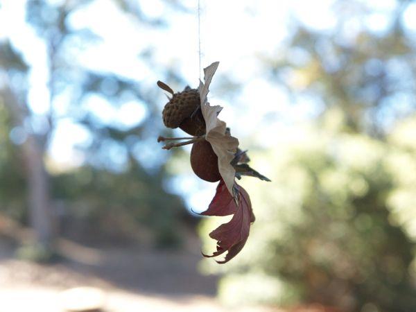 Pregant Autumn Leaf Fairy : www.theMagicOnions.com