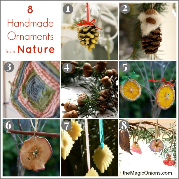 8 Handmade Christmas Ornaments From Nature - www.theMagicOnions.com
