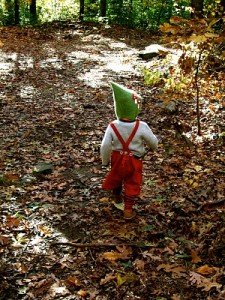 Nature in Waldorf Education : Discovering Waldorf Education : www.theMagicOnions.com