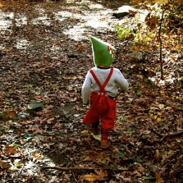 Nature in Waldorf : Discovering Waldorf Education.