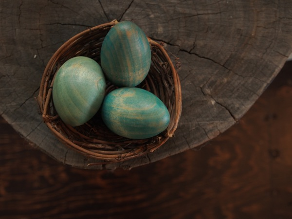 Spring Robin's Nest : Magic Craft Box : www.theMagicOnions.com
