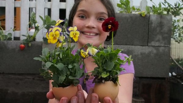 Flowers planted in Easter Eggs : www.theMagicOnions.com