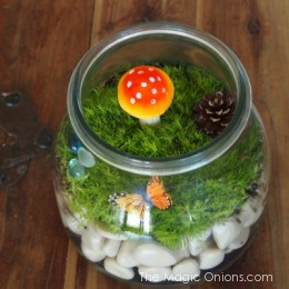 Let's Make a Terrarium : DIY Gardening Tutorial for Kids