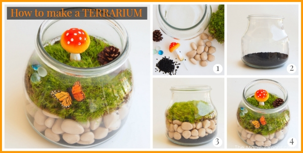 How to make a Terrarium : The Magic Onions : www.theMagicOnions.com
