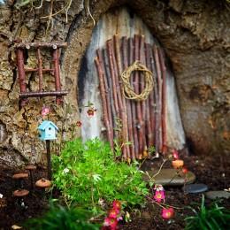 The Cutest Fairy Garden EVER!