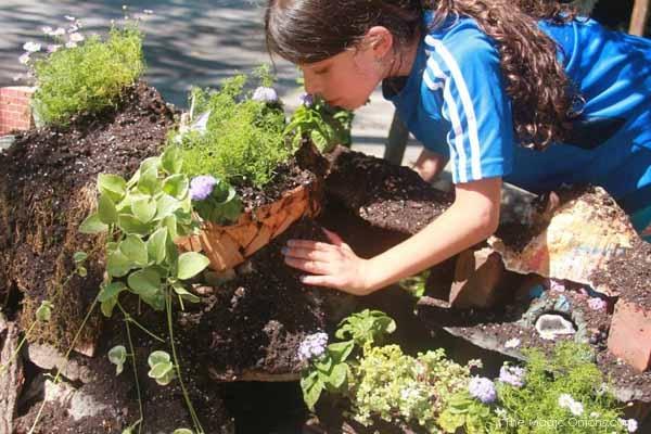 Amazing Fairy Garden : www.theMagicOnions.com