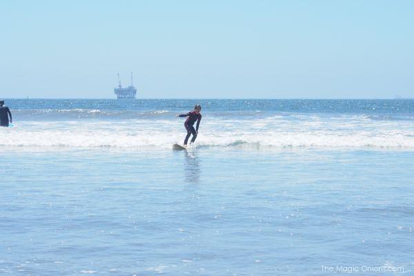 Teddy Surfing : www.theMagicOnions.com