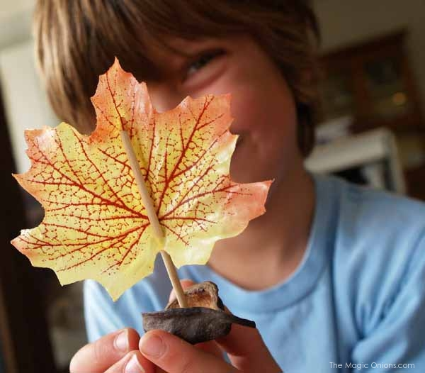 Tutorial : Make a Walnut Leaf Boat : www.theMagicOnions.com