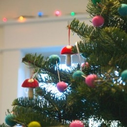 All About Advent : Discovering Waldorf Series