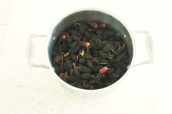 photo of a us making mulberry jam