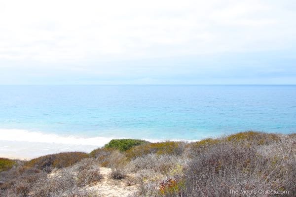 Crystal Cove State Park Photo