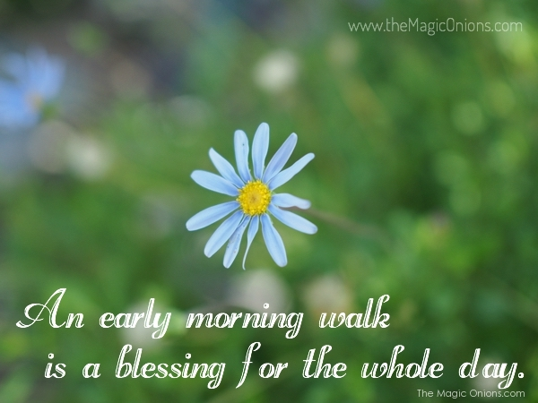 Photo of an early morning walk is a blessing for the whle day - Henry David Thoreau Quote