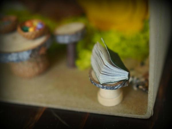 Miniature book in my fairy garden photo