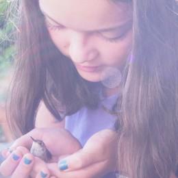 Feeding our Baby Hummingbird