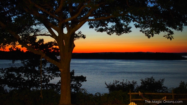 Maine Island Life.