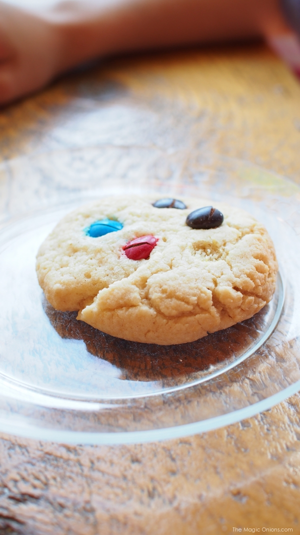 Cookies, Portland, Maine - www.theMagicOnions.com
