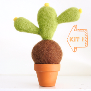 DIY Needle Felting Kit, Cactus Succulent Kit : www.theMagicOnions.com/shop