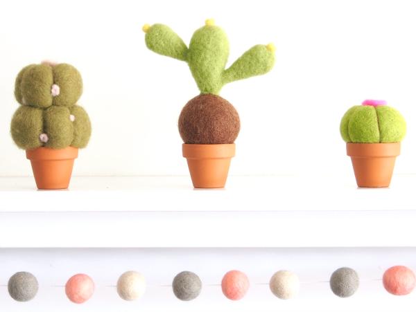 Needle Felting Kit : Felted Cactus Succulent Plant : www.theMagicOnions.com/shop