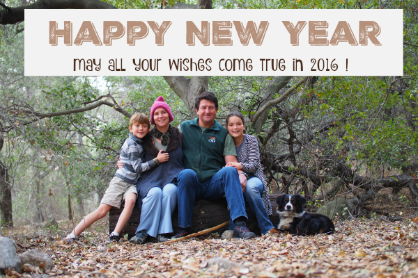 Happy New Year :: 2016 !