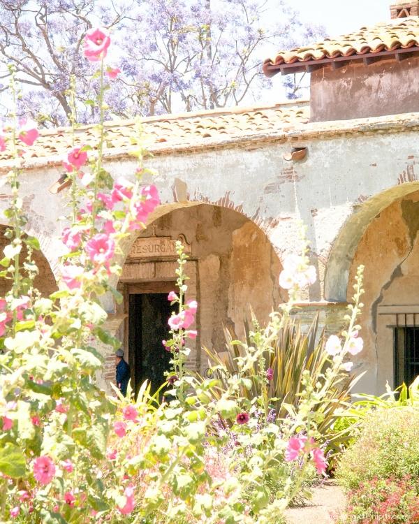 Beautiful Garden :: www.theMagicOnions.com