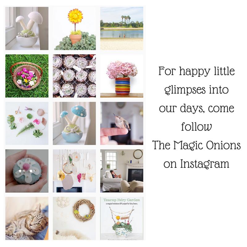 Follow The Magic Onions on Instagram