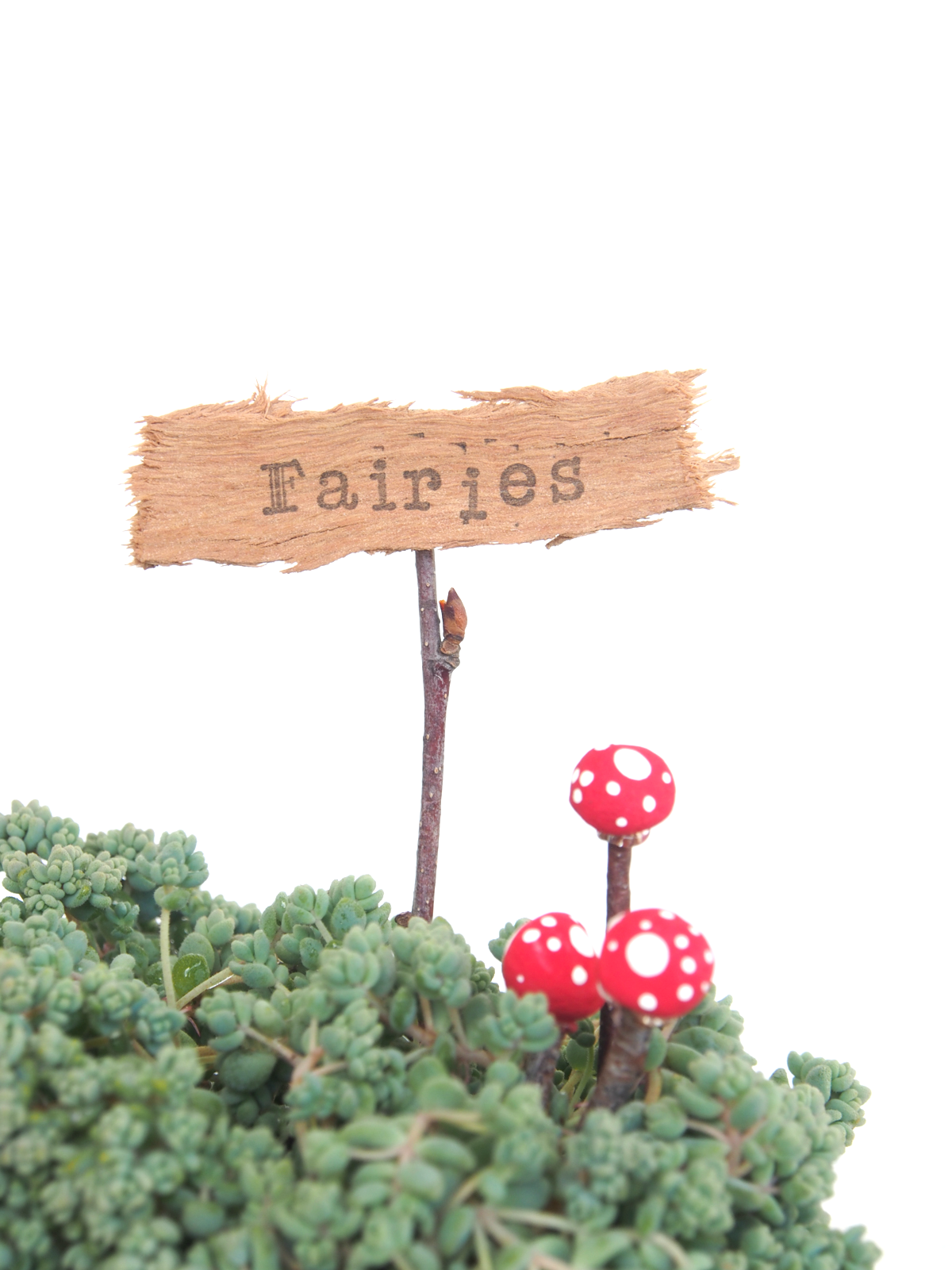 How To Make A Rustic Sign For Your Fairy Garden