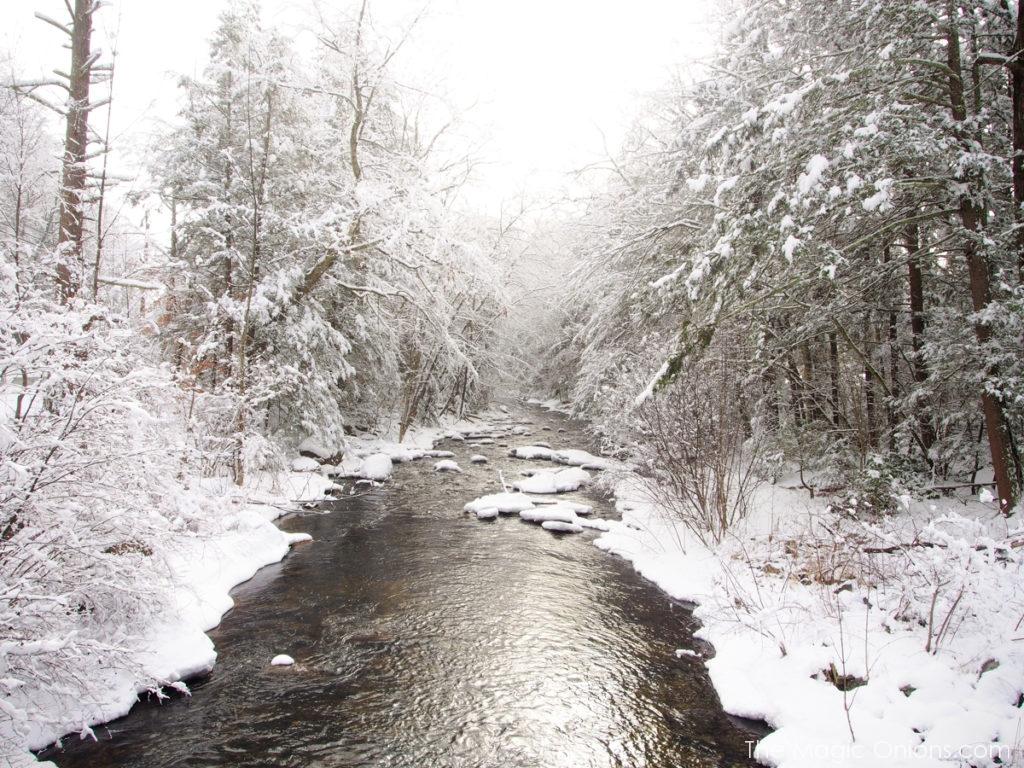 Snow in Wilton, New Hampshire -- www.theMagicOnions.com 1-6