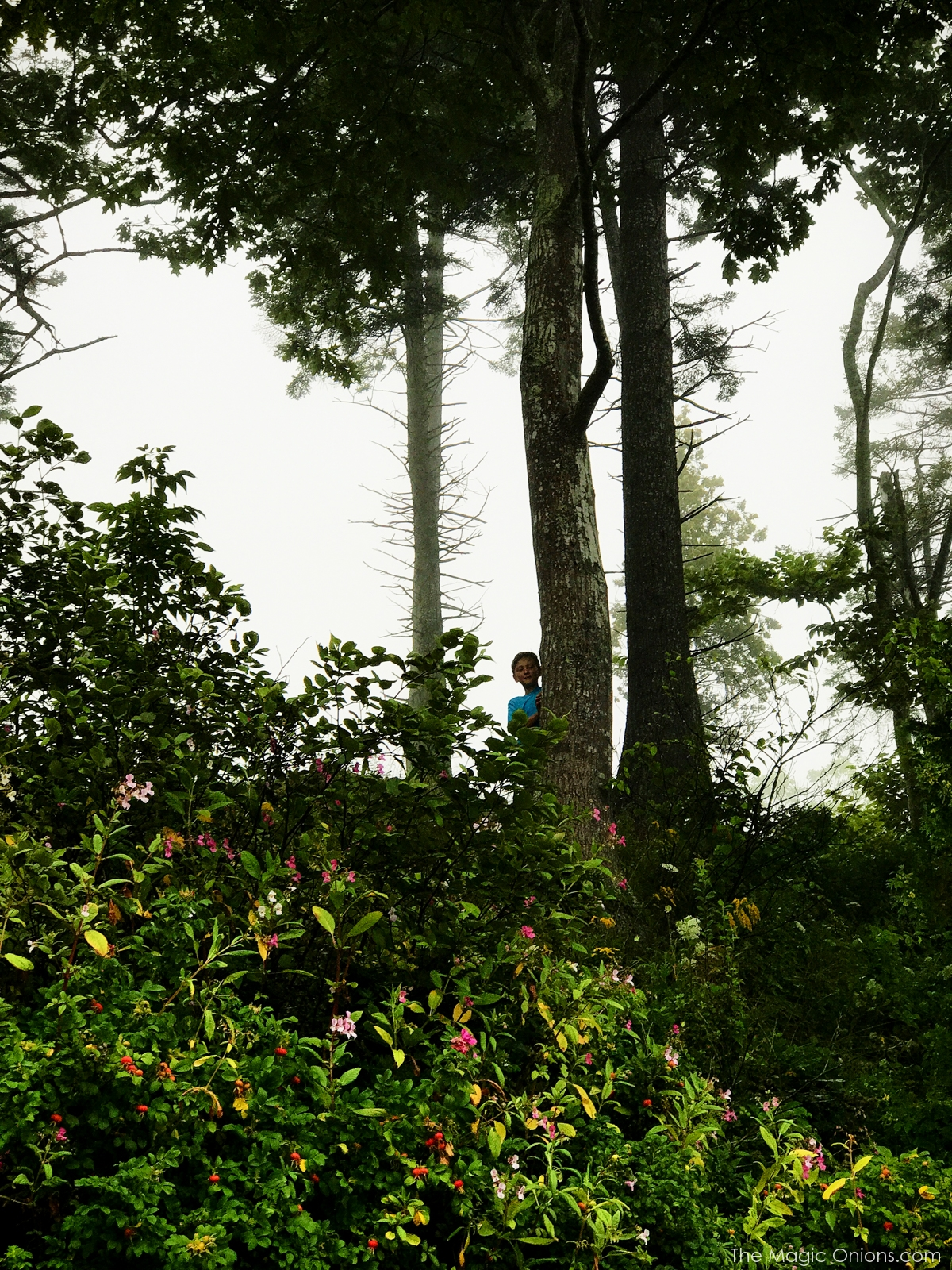 Portland, Maine Coast Photos