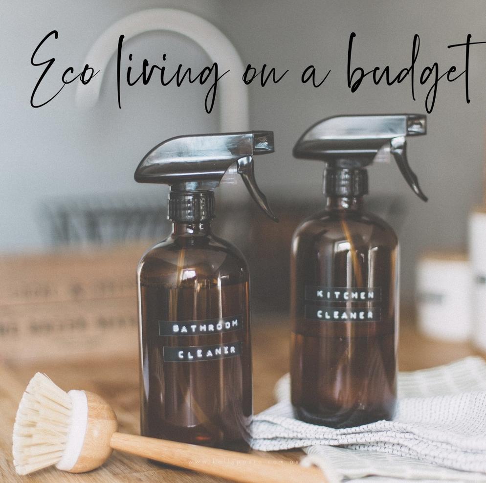 Eco Living on a budget